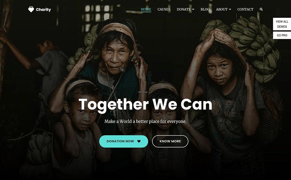 charity-theme